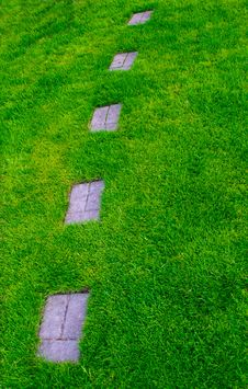Free Footpath On A Grass Royalty Free Stock Images - 19756109