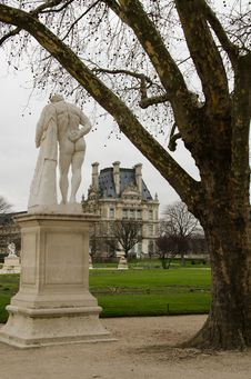 Free Jardin Des Tulieries Royalty Free Stock Photography - 19757447