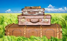 Free Green Wheat Field With Three Old Leather Suitcases Royalty Free Stock Photo - 19757585