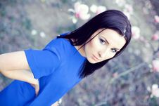 Free Attractive Brunette In A Blue Dress Royalty Free Stock Photo - 19759085