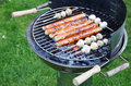 Free Grilling At Summer Weekend Stock Images - 19761854