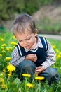 Free Boy With Dandelion Stock Photos - 19763963