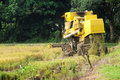 Free Harvesting Paddy With Harvesting Machine Royalty Free Stock Photography - 19765687