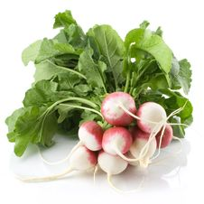 Free Fresh Radishes Isolated Stock Photography - 19761522