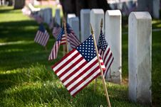Free Flags And Headstones Royalty Free Stock Photography - 19763587