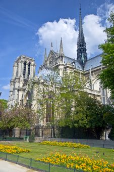 Free Notre Dame De Paris Royalty Free Stock Photos - 19764568