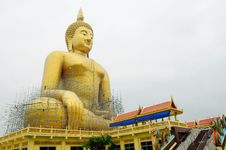 Free Giant Buddha Statue Royalty Free Stock Photo - 19764775
