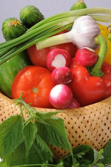 Basket With Vegetables. Stock Image
