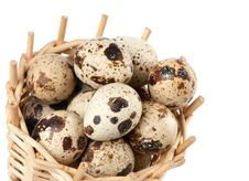 Free Quail Eggs Royalty Free Stock Images - 19766789