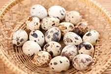 Free Quail Eggs Stock Images - 19766794