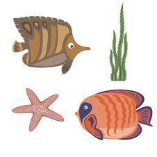 Free Marine Life Royalty Free Stock Images - 19770299
