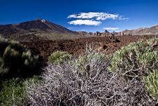 Free Teide - Volcano Landscape Royalty Free Stock Images - 19770849
