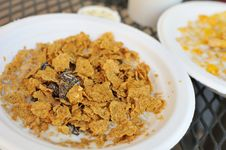 Free Cereal With Dried Fruits Stock Photo - 19773570