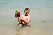 Boy Is Playing With A Coconut On Stock Images