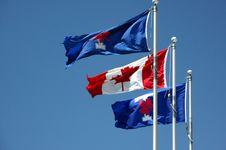 Free Canadian Flag Stock Photos - 19778643