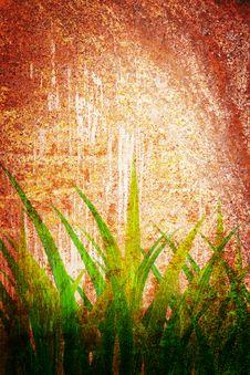 Free Grunge Retro Vintage Rusty Grass Pattern Royalty Free Stock Photo - 19778945