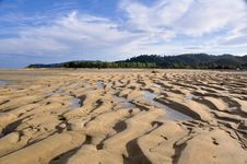 Beach At Abel Tasman National Park Stock Photography