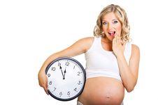 Pregnant Woman Isolated On White Royalty Free Stock Photos