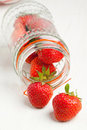 Free Pot Of Fresh Strawberry Stock Photo - 19781170