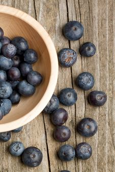 Free Bowl With Fresh Blueberry Stock Photography - 19781012