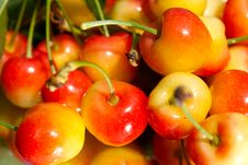Free Crisp Cherries Stock Image - 19781521