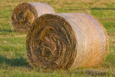 Free Two Hay Stack On The Meadow Royalty Free Stock Photos - 19781658