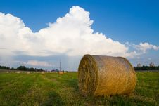 Free Hay Stack On The Green Meadow Royalty Free Stock Images - 19781709