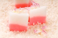 Free Japanese Dessert, Mochi With Rose Royalty Free Stock Images - 19784139