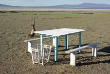 Free Table In The Desert, Mongolia Stock Images - 19784304