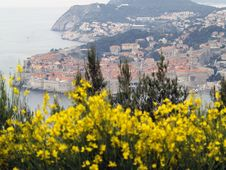Free Dubrovnik Cityscape Royalty Free Stock Photography - 19784317