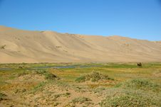 Free Landscape In Mongolia Royalty Free Stock Photos - 19784328