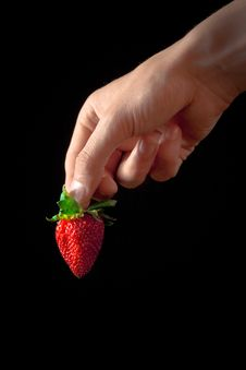 Free Strawberries Royalty Free Stock Photo - 19785165