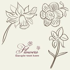 Free Vintage Flower Background Royalty Free Stock Photo - 19785305