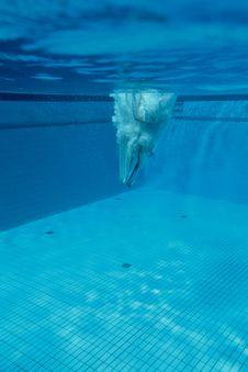 Free Platform Diver Under Water Stock Images - 19785874