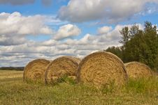 Free Hay Bales In Field Stock Photo - 19787320