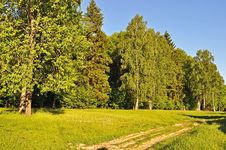 Forest Edge And Dirt Road At Sunset Royalty Free Stock Photos