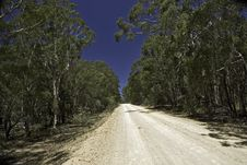Free Dirt Track Road Royalty Free Stock Photo - 19789325