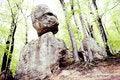 Free Fabulous Stones Stock Photo - 19790020