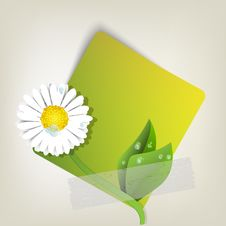 Free Green Paper With Flower Royalty Free Stock Photos - 19790518