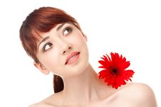 Free Beauty Woman With Flower Stock Image - 19792951