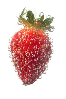 Free Strawberrie In Water Bubble Royalty Free Stock Image - 19793016