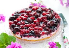Berry Tart Stock Photos