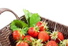 Free Juicy Strawberries In The Basket Royalty Free Stock Photos - 19797798