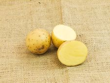 Free Potatoes Stock Image - 19798011