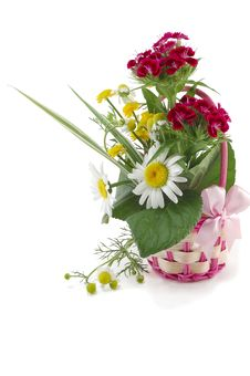 Free Wattled Basket From A Rod With Natural Flowers Royalty Free Stock Photo - 19798015