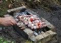 Free Meat Fried At Fire. Shashlik Stock Photos - 1980113