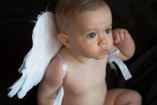 Free Angel Baby Stock Photos - 1980173