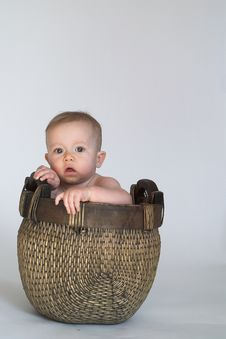 Free Basket Baby Stock Photos - 1981533