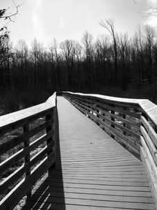 Free B/w Walkway Royalty Free Stock Image - 1981556