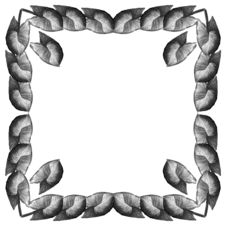 Free Framework From Leaves Syngonium (Square) Stock Image - 1983331